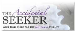 The Accidental Seeker RSS Feed